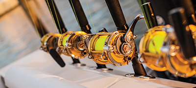 Golden fishing reels on rods lined up
