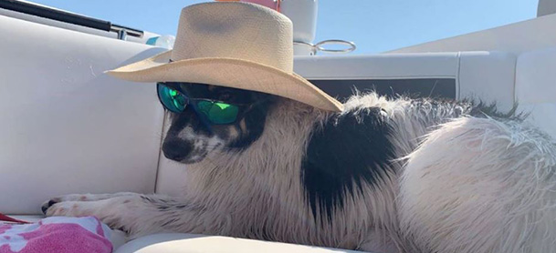 A dog laying aboard a boat, wearing a sunhat and sunglasses