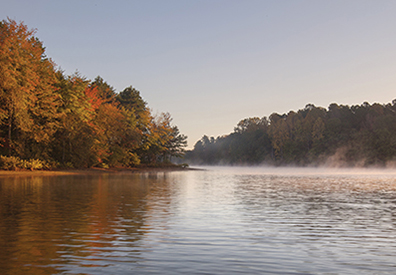 misty lake with multi colored trees on the shore