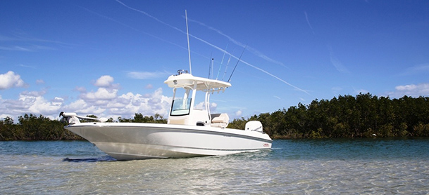 A Boston Whaler Dauntless Pro