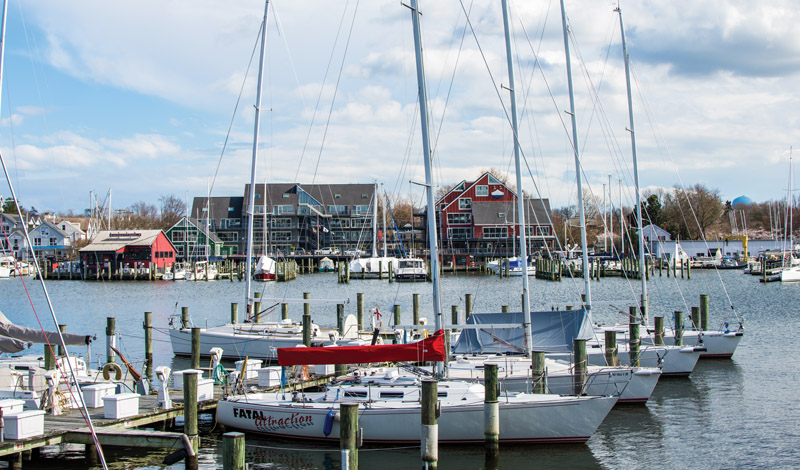 Sailboats docked in Herring Bay, Annapolis, MD