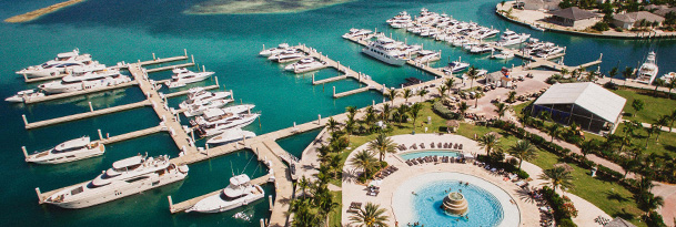 aerial  of multiple boats docked
