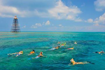 key-west-reef-snorkeling-cruise-in-key-west-198553.jpg