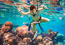 Snorkeling in French Caribbean