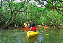 People kayaking in New Zealand