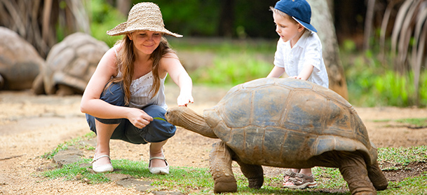 Woman and child with tortoise