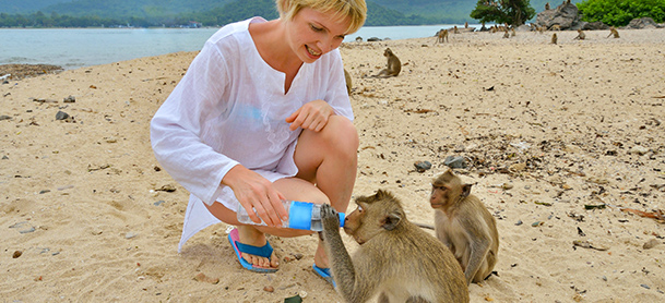 Woman giving bottle of water to monkeys