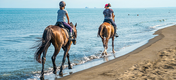 People riding horses along shore